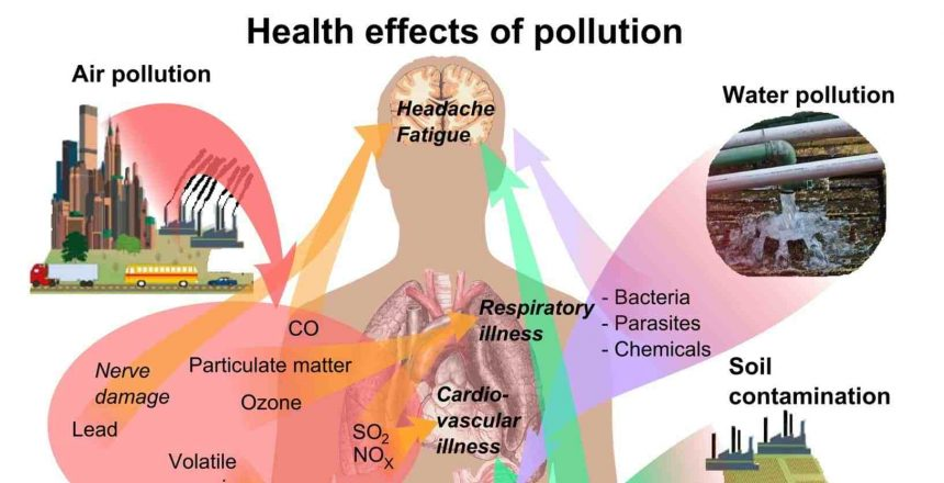 Are you Toxic? Health effects of toxins.
